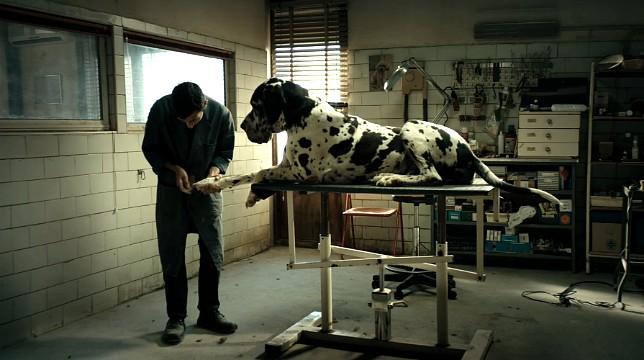 Dogman di Garrone, in concorso al Festival di Cannes